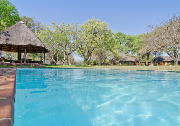Giraffe Camp Pool Area